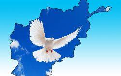 چرا صلح افغانستان به سرانجام نمیرسد؟