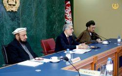 رییس اجرایی: اگر نفوس افغانستان به اندازۀ چین بود، نتایج انتخابات ما در قیامت اعلام میشد