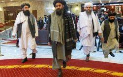 «طالبان به بازگشت به قدرت از هرراه ممکن فکر میکنند»